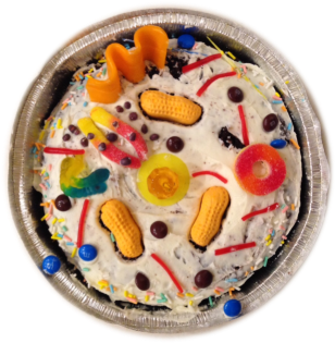 51c3f-cell2bcake