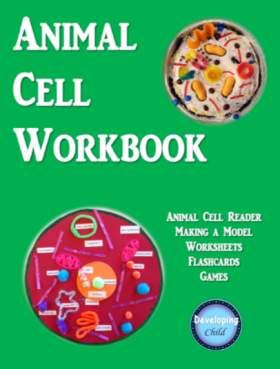 Animal Cell Workbook Cover.png